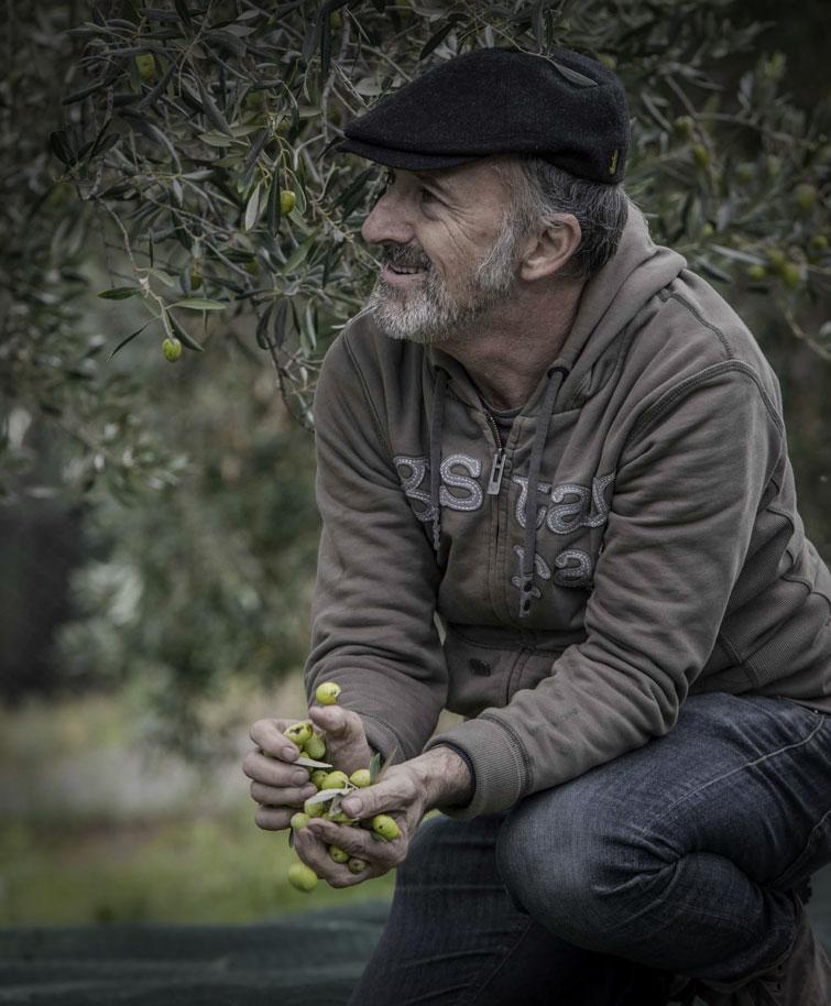 Stefano Boschi | Frantoio Malavalle | Olio creato con passione